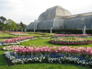 Kew Gardens Spring